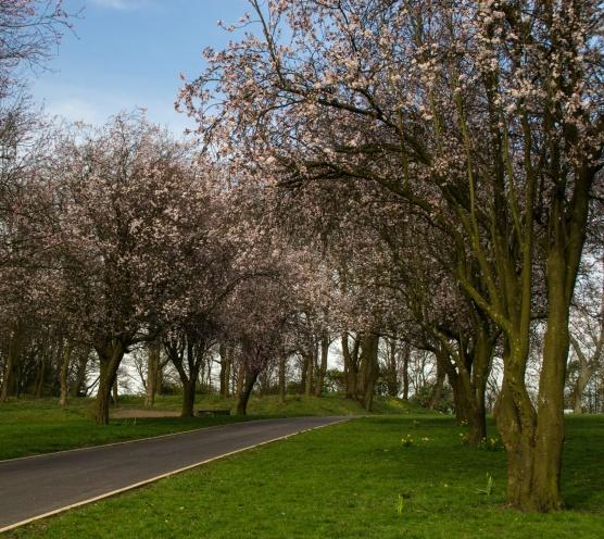 Queens Park, Bolton